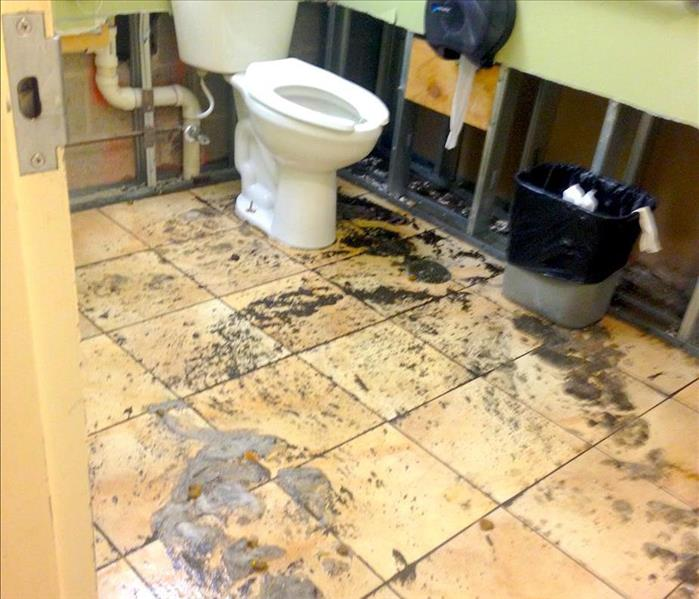 Storm Surge Soaks HoCo Bathroom With Sewage Before
