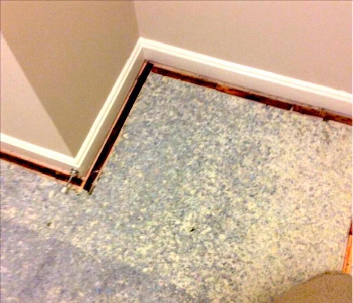 Uncovering Mold Doesn't Need To Be Stressful Before