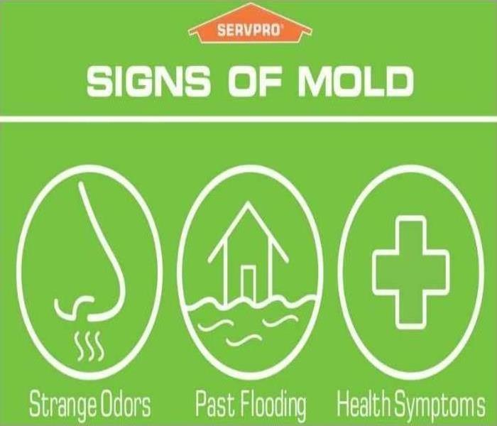 Mold Remediation Stay ahead of mold.