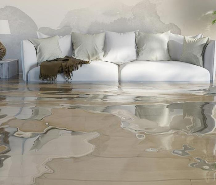 Water Damage Water Damage....is it clean water or not?!