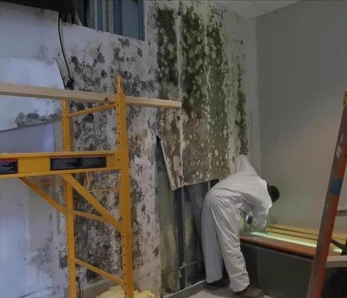 Commercial Keep Your Business Cool And Keep Mold Away