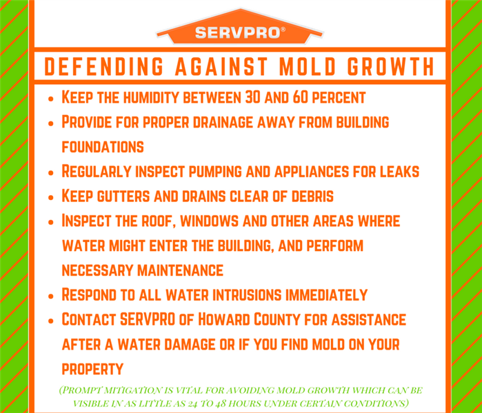 Mold Remediation A Mold Defense Is Your Guaranteed MVP
