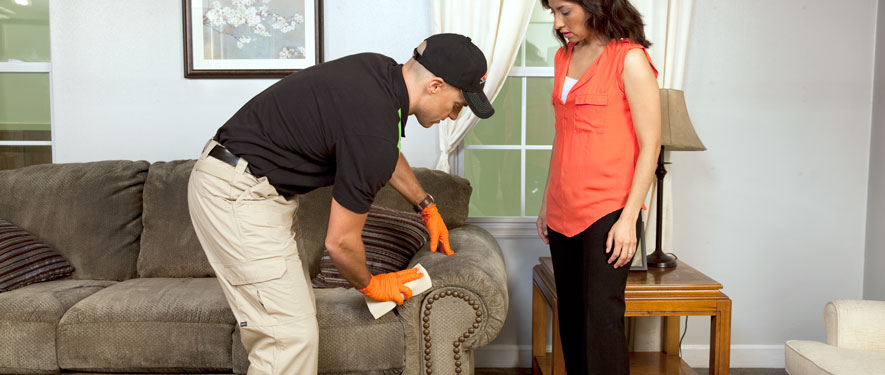 Columbia, MD carpet upholstery cleaning